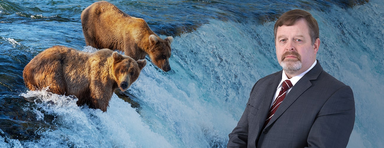 Hero Banner - Attorney Profile Picture over a photo of two bears eating salmon in a river